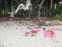 Michi on the beach